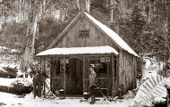 Waratah Hut