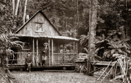 Wellington Hut