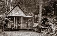 Wellington Hut
