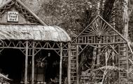 Grasstree Hut