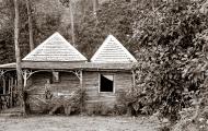 Wattle Grove 2 hut