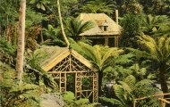 Fern Retreat Hut