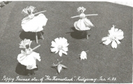 Poppy fairies, The Homestead, Ridgeway