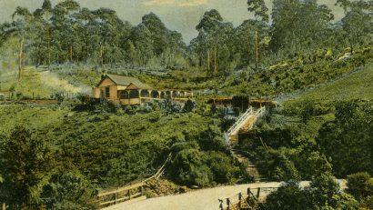 Fairy Gorge tea gardens
